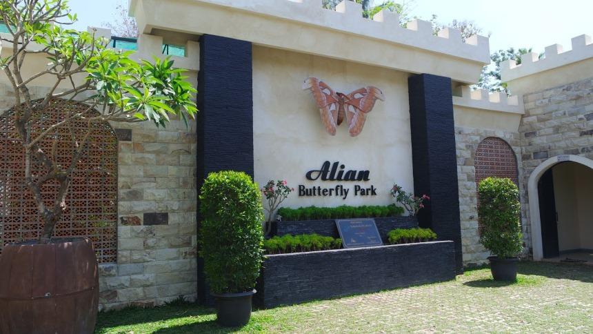 Alian Butterfly Park Alian Butterfly Park - Dolan Dolen