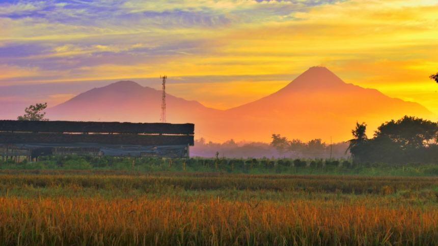 Sunrise Persawahan Jogja Sunrise Persawahan Jogja - Dolan Dolen