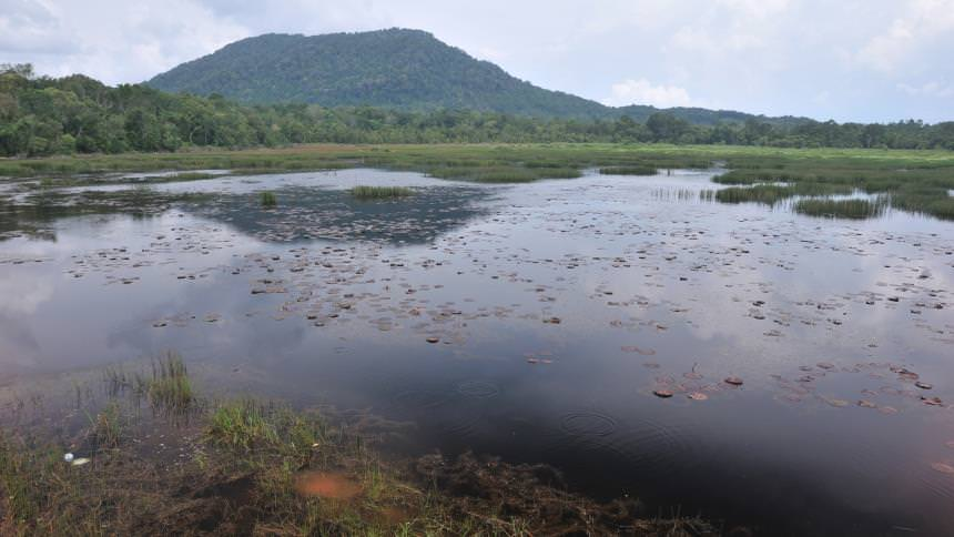 Desa Sri Bintan Desa Sri Bintan - Dolan Dolen