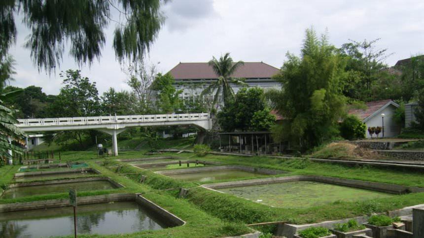 Jembatan Fakultas Pertanian UGM Jembatan Fakultas Pertanian UGM - Dolan Dolen