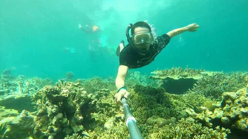 Snorkeling Pulau Peucang Snorkeling Pulau Peucang - Dolan Dolen
