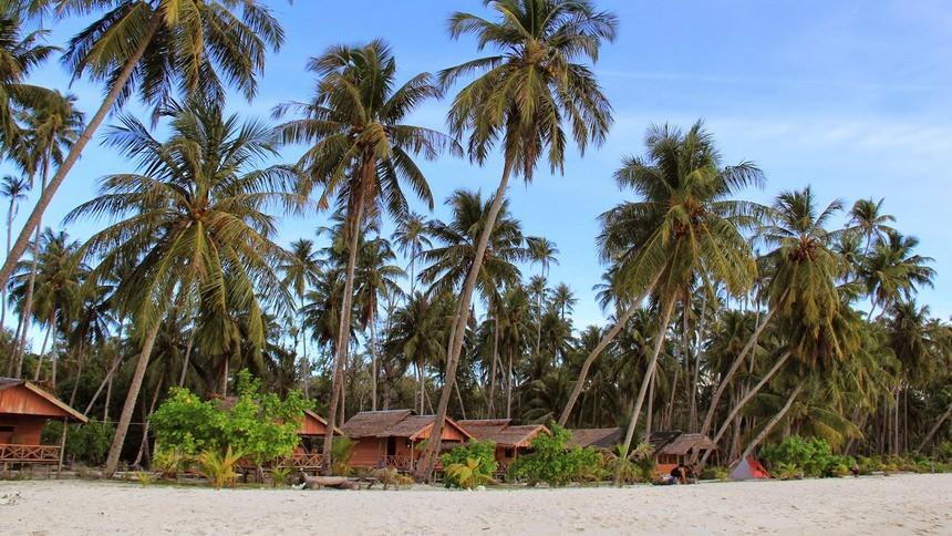 Penginapan di Pulau Palambak Penginapan di Pulau Palambak - Dolan Dolen