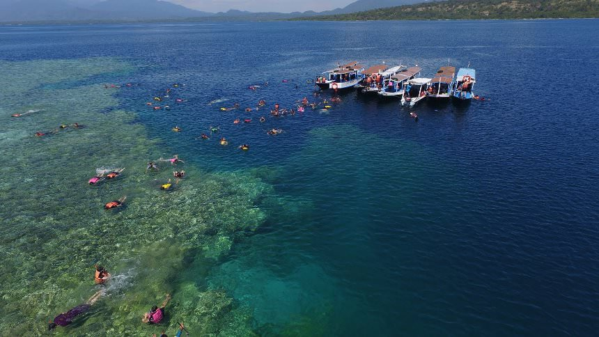 Snorkeling Pulau Menjangan Snorkeling Pulau Menjangan - Dolan Dolen