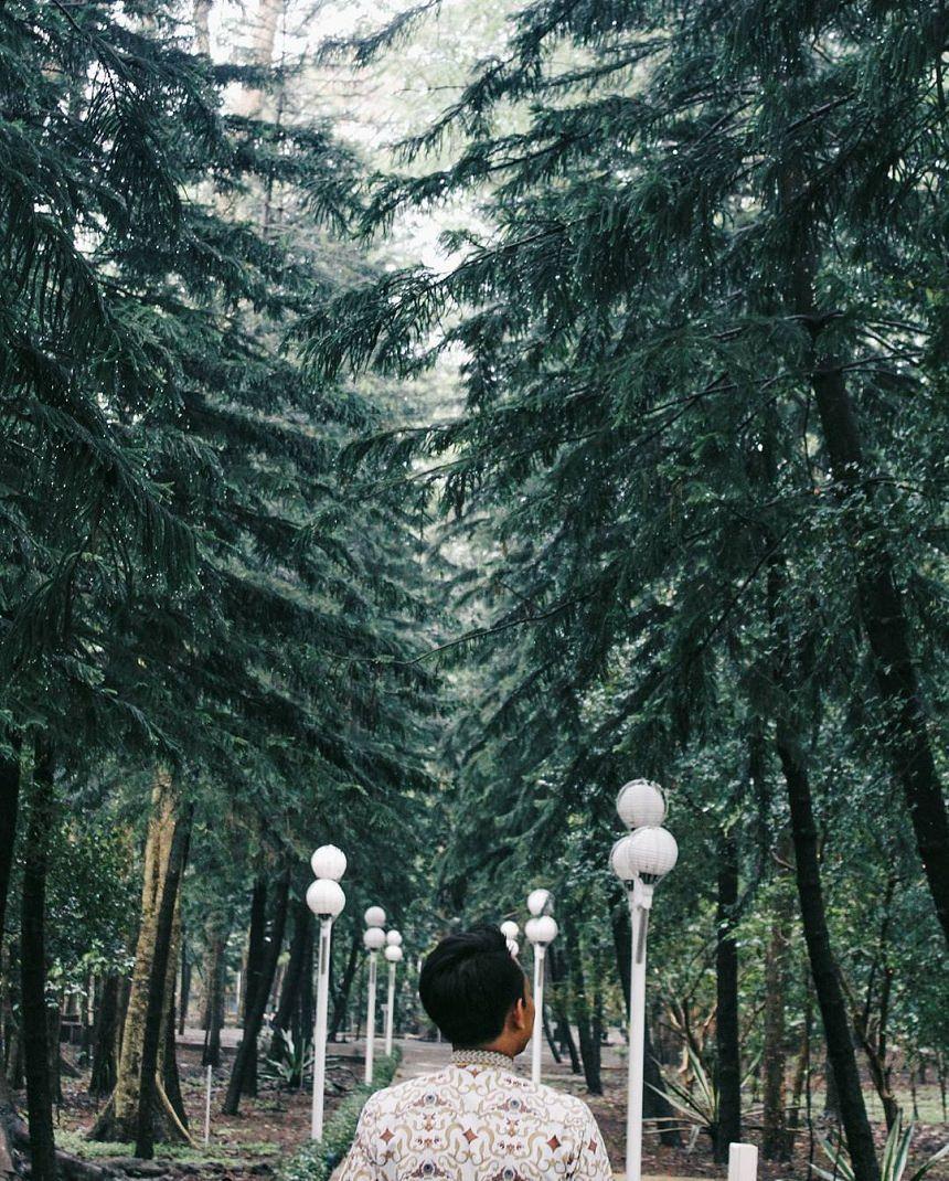 Hutan Kota Malabar Malang Hutan Kota Malabar by Rifansykh Dolaners - Dolan Dolen