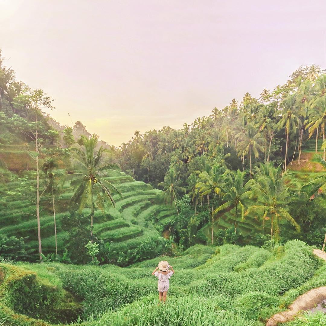 Tegalalang Rice Terrace Ubud, Bali - Dolandolen.com Ubud Rice Fields by Wahyu Mahendra Dolaners - Dolan Dolen
