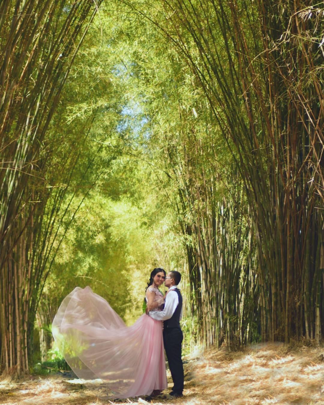 Hutan Bambu Keputih, Hutan Bambu Keputih Surabaya, hutan bambu, foto keren, Dolan Dolen, Dolaners Hutan Bambu Keputih by yudha photography - Dolan Dolen