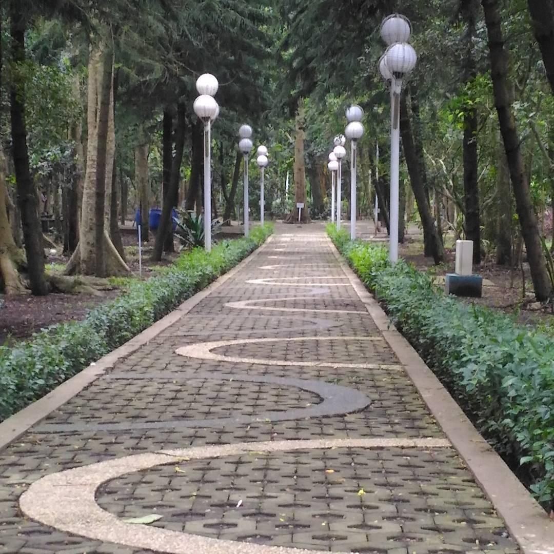 Hutan Kota Malabar, Hutan Kota Malabar Malang, Malang, Kota Malang, Dolan Dolen, Dolaners Hutan Kota Malabar via hanakram - Dolan Dolen