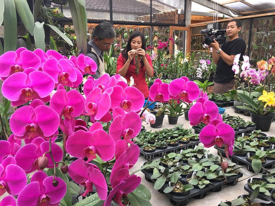 Rumah Bunga Rizal, Rumah Bunga Rizal Bandung, Bandung, Kota Bandung, Dolan Dolen, Dolaners Rumah Bunga Rizal via worry mei - Dolan Dolen