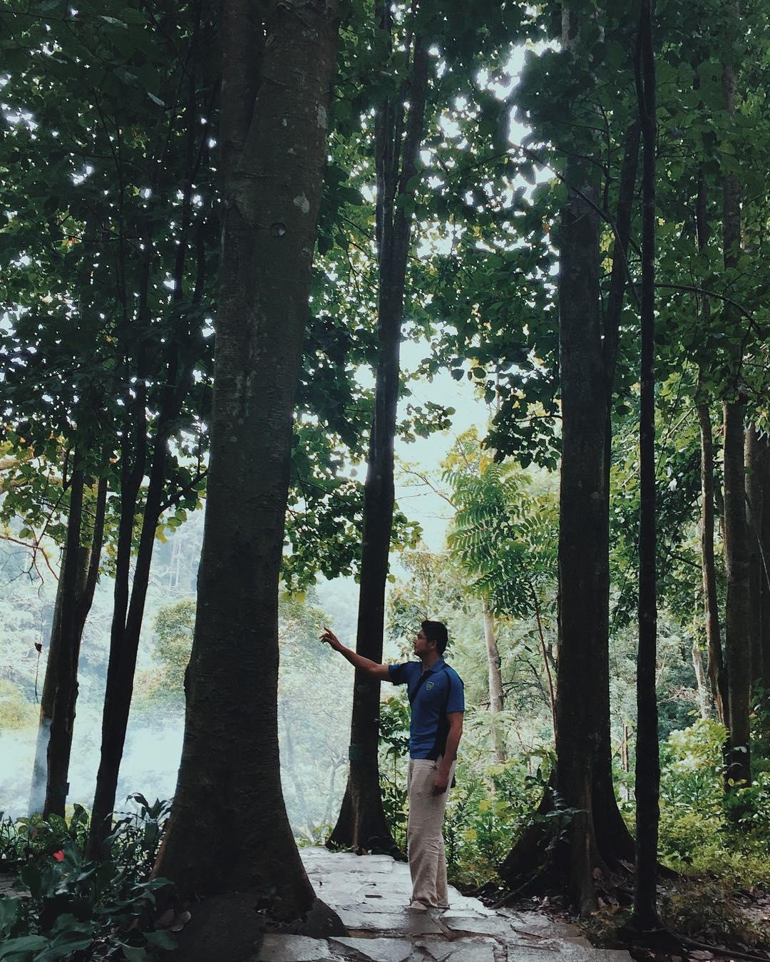 Taman Hutan Raya Ir H Djuanda, Taman Hutan Raya Bandung, Bandung, Dolan Dolen, Dolaners Taman Hutan Raya Ir H Djuanda by sayasenangjalan - Dolan Dolen
