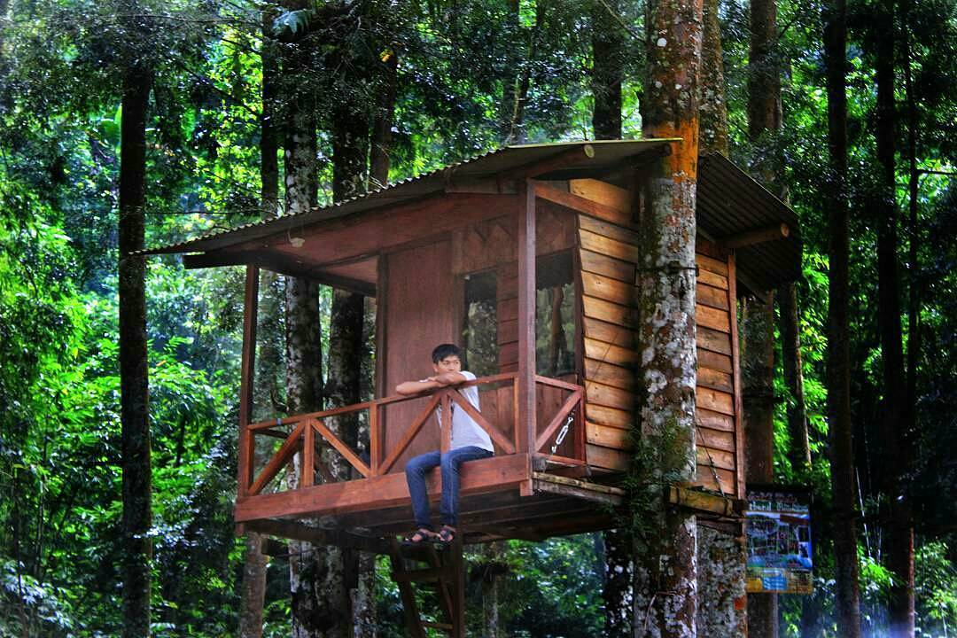 Rumah Pohon Ledok Ombo, Rumah Pohon Ledok Ombo Malang, Kabupaten Malang, Dolan Dolen, Dolaners Rumah Pohon Ledok Ombo via oidkun - Dolan Dolen
