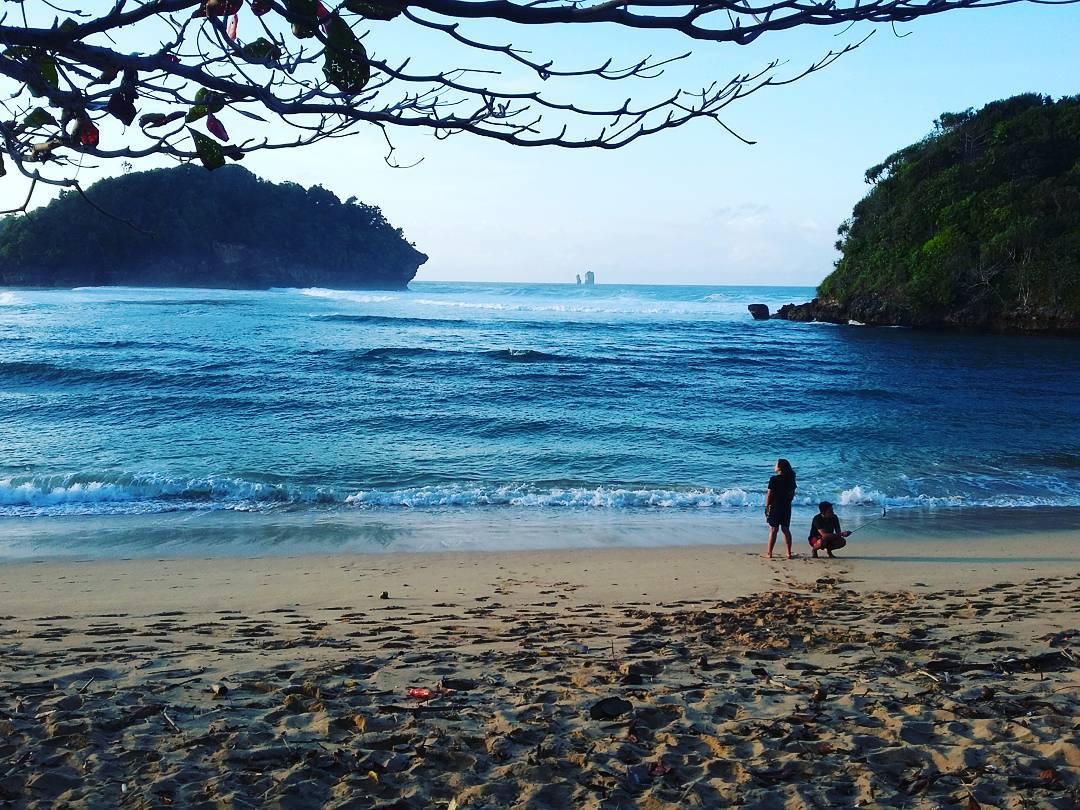 Bintang di Pantai Teluk Asmoro, Malang, Kabupaten Malang, Dolan Dolen, Dolaners Bintang di Pantai Teluk Asmoro via detribuddy - Dolan Dolen