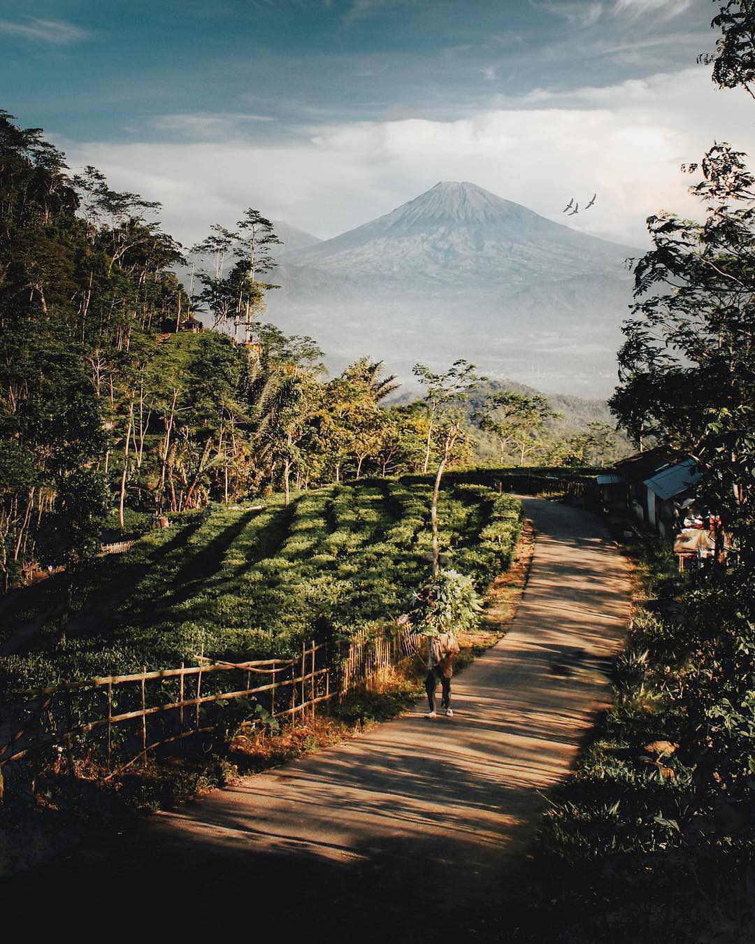 Nglinggo, Nglinggo Yogyakarta, Yogyakarta, Dolan Dolen, Dolaners Nglinggo by awide  - Dolan Dolen