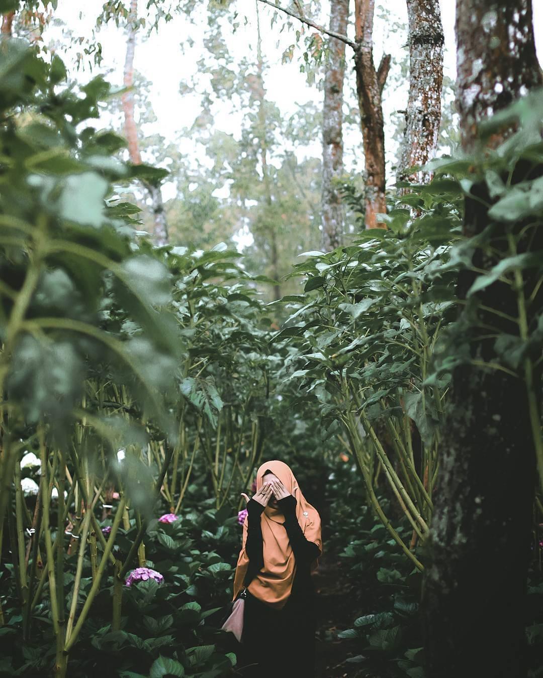 Alam yang Hijau Merimbun, Malang, Malang Raya, Dolan Dolen, Dolaners Alam yang Hijau Merimbun by harry garenk87 - Dolan Dolen