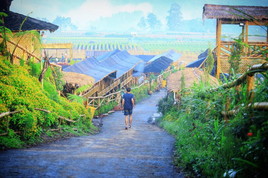 Desa Wisata Pujon Kidul, Desa Wisata Pujon Kidul Kabupaten Malang, Malang, Dolan Dolen, Dolaners Desa Wisata Pujon Kidul via mas aan barcelonesta - Dolan Dolen