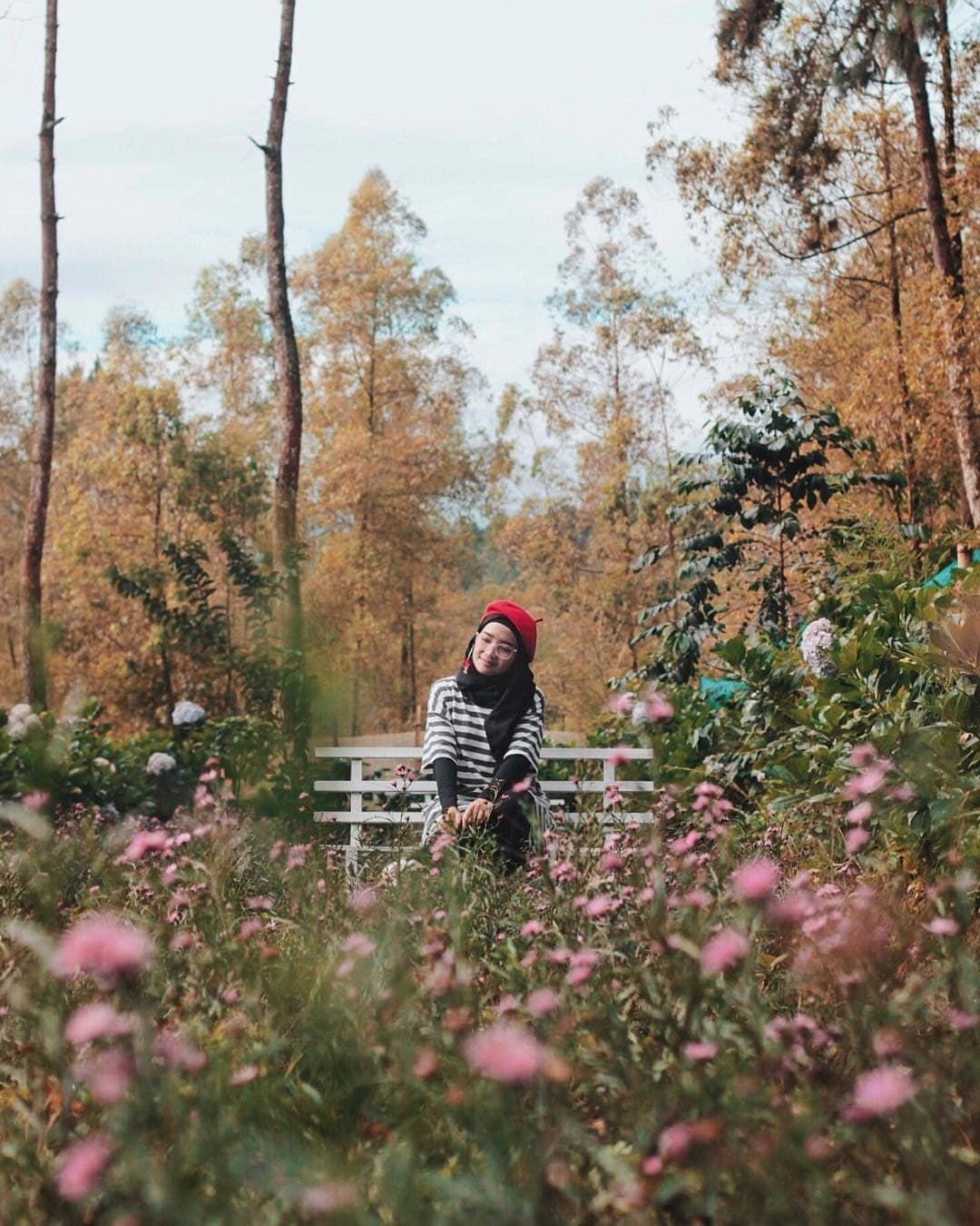 Instageniknya Taman Bunga yang Romantis, Malang, Malang Raya, Dolan Dolen, Dolaners Instageniknya Taman Bunga yang Romantis by novanirza - Dolan Dolen