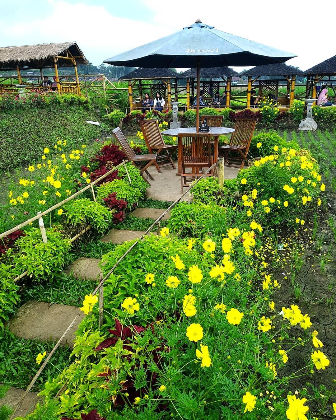 Desa Wisata Pujon Kidul Di Kabupaten Malang Ini 14 Faktanya