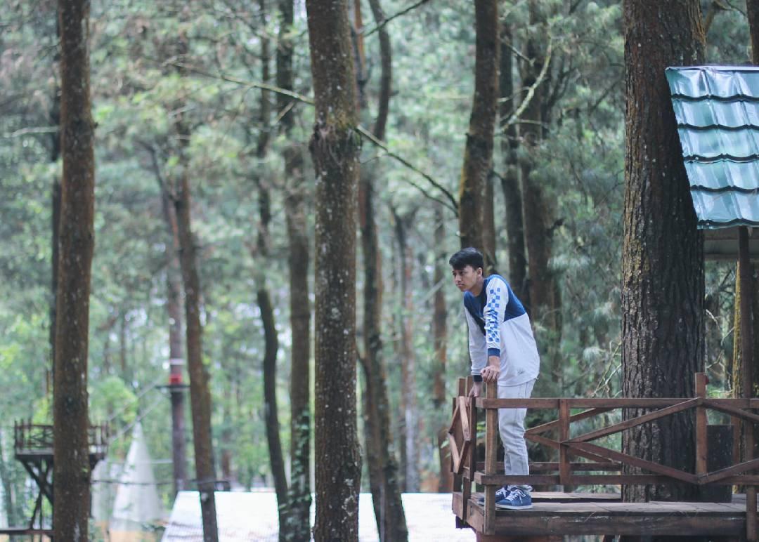 Rumah Pohon, Spot Selfie Mainstream, Malang, Malang Raya, Dolan Dolen, Dolaners Rumah Pohon Spot Selfie Mainstream Tetap Menarik via ferdian gusta - Dolan Dolen
