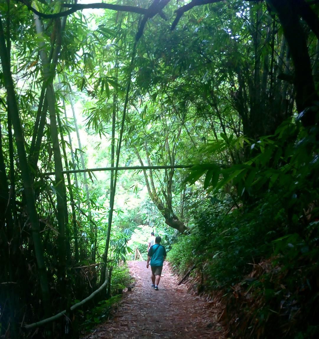 Go Hiking, Kota Batu, Malang Raya, Dolan Dolen, Dolaners Go Hiking via hadiiswa - Dolan Dolen