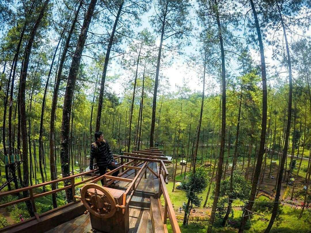 Taman Pinus Bendosari Taman Pinus Bendosari - Dolan Dolen
