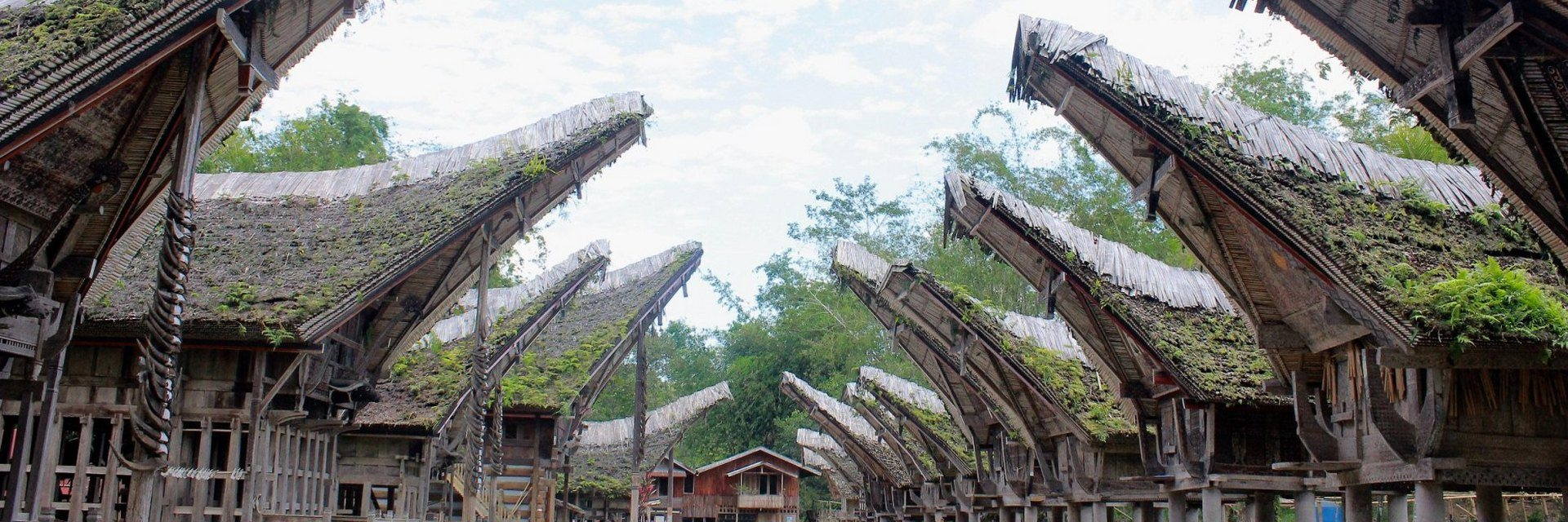 10 Kegiatan yang Wajib Dolaners Lakukan Saat Berlibur ke Tana Toraja 10 Kegiatan yang Wajib Dolaners Lakukan Saat Berlibur ke Tana Toraja - Dolan Dolen