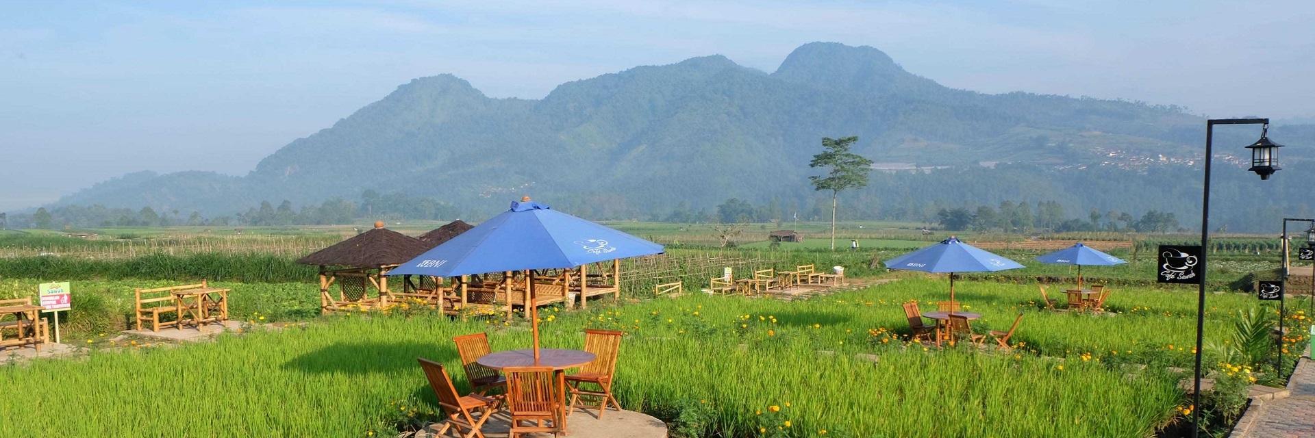 Desa Wisata Pujon Kidul di Kabupaten Malang, Ini 14 Faktanya