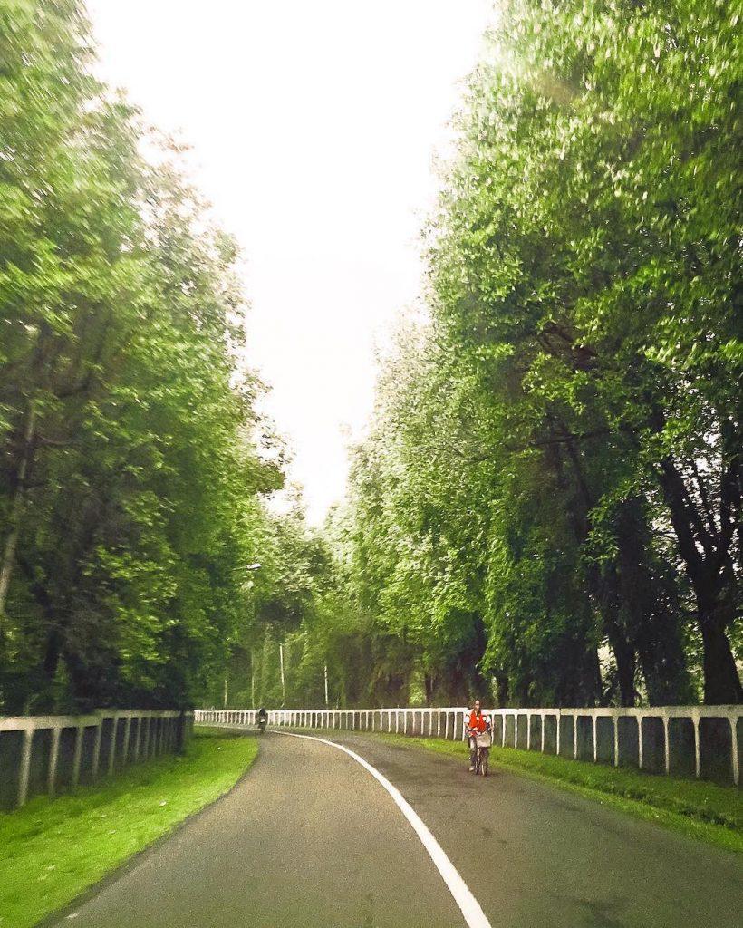 Taman dan Kawasan Hijau Menuju Halim Perdanakusuma, Jakarta
